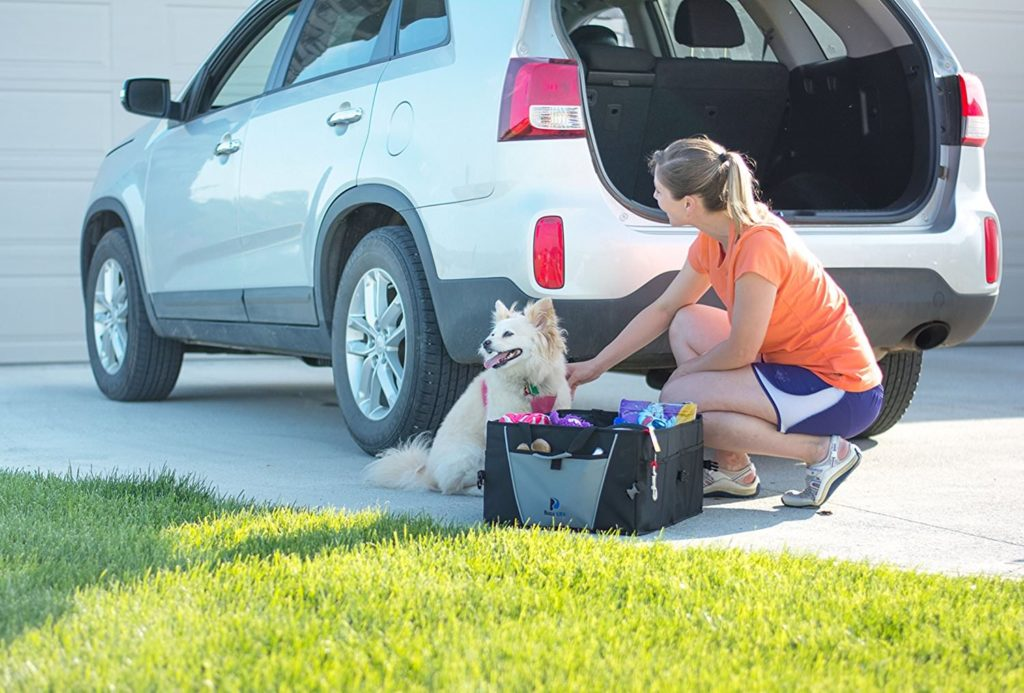 Girl outside with dog and car organizer