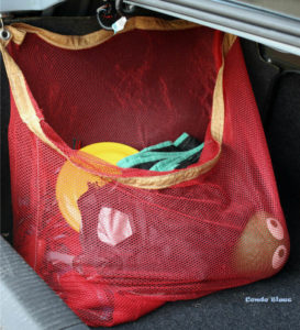 red net organizer holding sports equipment in the car