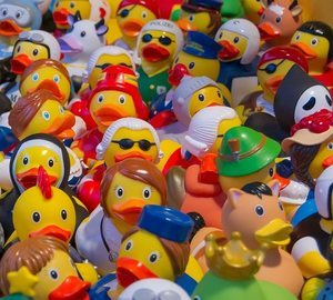 an army of toy ducks
