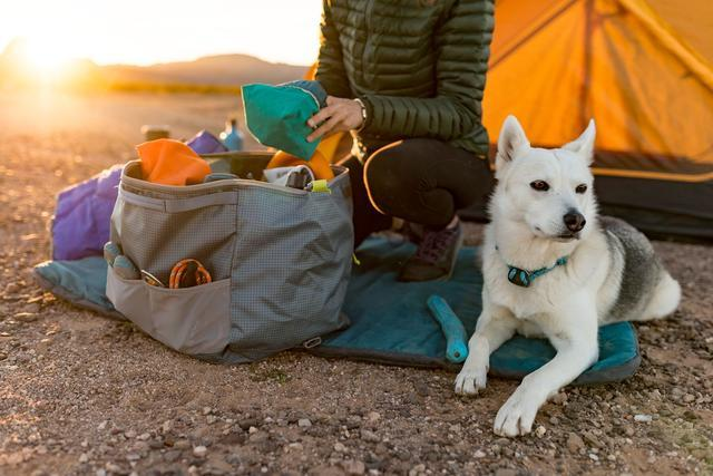 Person unpacking their Orvis dog travel bug at a camping site.