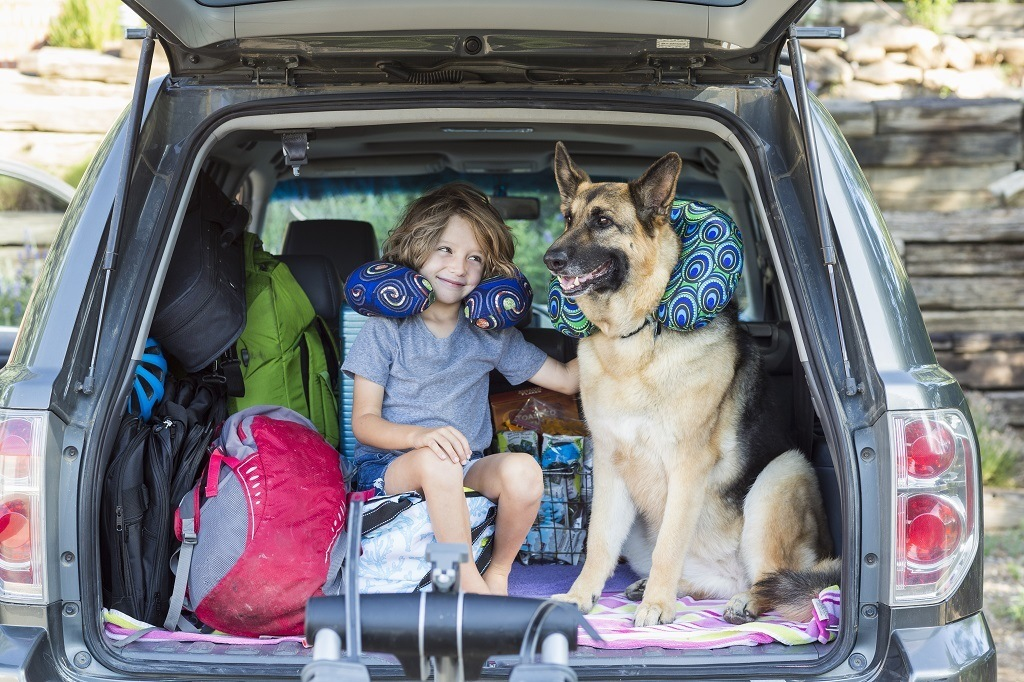 dog and boy in a packed suv that needs more storage